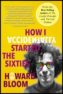 How I Accidentally Started the Sixties cover Michalski #3 updated v2 w border 12-5-2013 copy